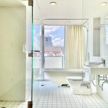 バスルームのマーメイド