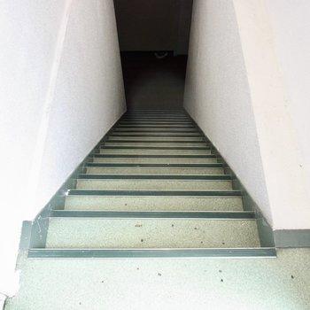 続いて、下に降りて見ましょう〜。