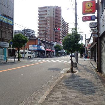 【周辺環境】小さな緑が見守ってくれる歩道を、てくてく5分くらい歩けば駅へ。