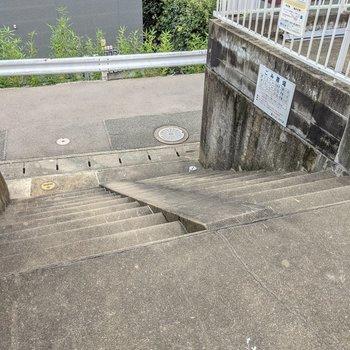 1階へもこの階段をのぼるので、1.5階のような感覚。