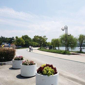 【周辺】大濠公園でのサイクリングも気持ちがいいだろうな