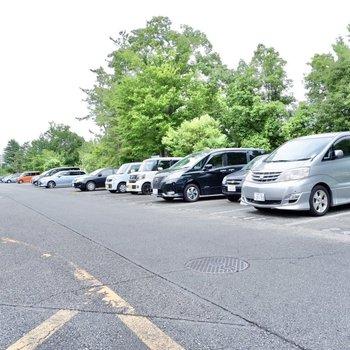 駐車場(空き要確認)。道幅が広く出し入れしやすいスペースです。