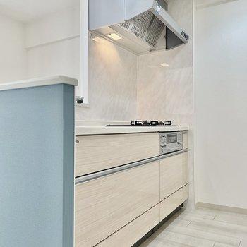 背面もしっかりスペースがある広々キッチン!