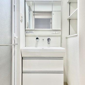 洗面台は収納も付いています。