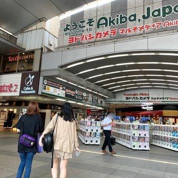秋葉原駅周辺には電気屋さんや飲食店が多く、賑わっています。