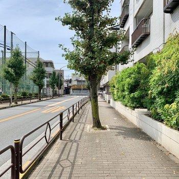 マンション前はきれいに舗装された歩道です。