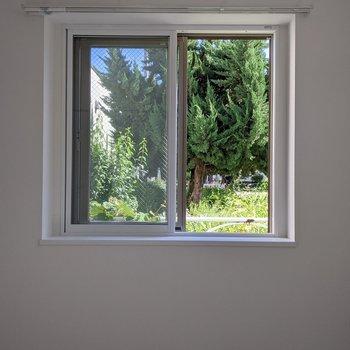 窓は南向き。日中は暖かい日差しが入ります。