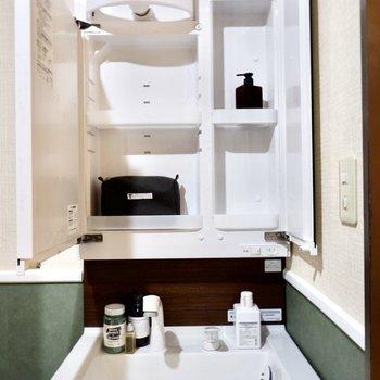 洗面台の鏡裏に小物を入れておけますよ。