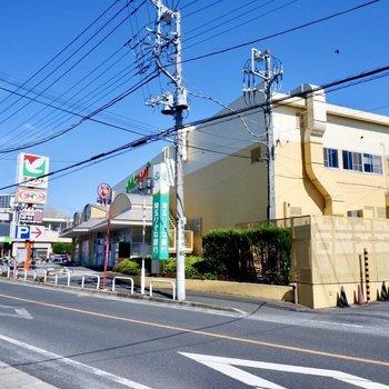 すぐ近くにあるスーパー。ドラッグストアや飲食店もありましたよ。
