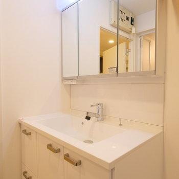 洗面台はシャワー付きの大きなものを。鏡の裏は収納で見た目もスッキリ!※写真は反転間取り別部屋のもの
