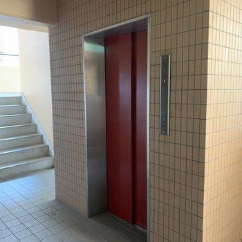 4階ですがエレベーター付きなので買い物帰りの移動も楽ちん◎