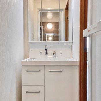 コンパクトな広さのなか、どーんと洗面台が構えています。三面鏡◎