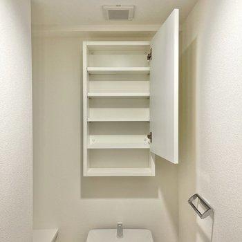 上部には扉付きの棚、タオルかけもありますよ。