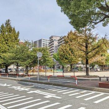 緑がきれいな公園。道幅も広めで自転車移動もしやすいですよ。