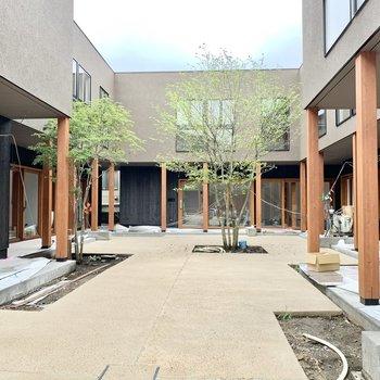 店舗が5戸入る予定で、人と人がつながる素敵なライフスペースに育っていきそうです。