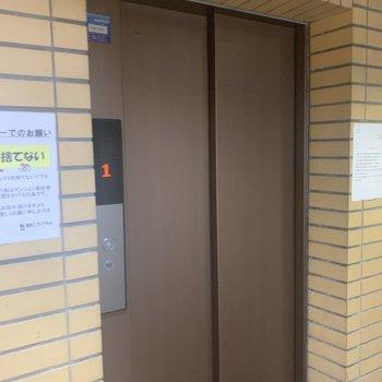 エレベータも設置されています。