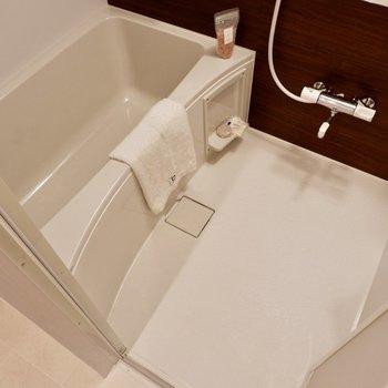 洗い場も浴槽も広めです!