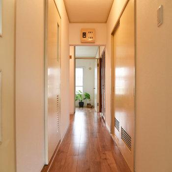 こちらはサニタリーや他の部屋へ繋がる廊下。