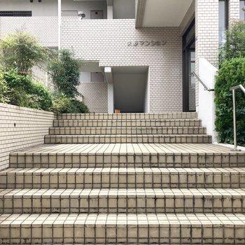 エントランス前の階段。少々長め。