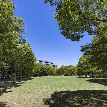 都会のオアシス東公園までは徒歩7分ほど。毎日のお散歩コースに。