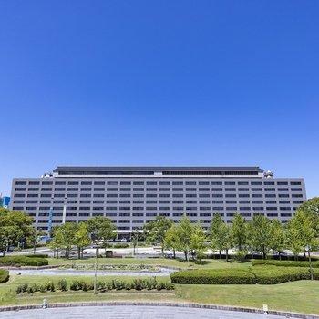 正面には福岡県庁があります。食堂も話題なんですよ!