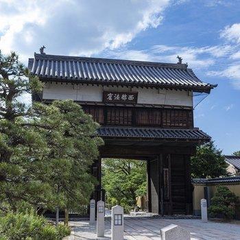 崇福寺までは徒歩3分。豊かな緑が気持ちいい。