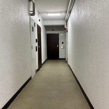 共用廊下は室内なので清潔感を保っています。
