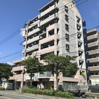 筑肥新道沿いのマンション。1階には動物病院が入っていました