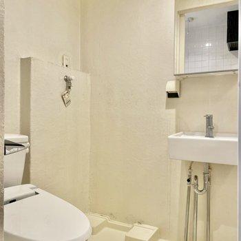 トイレと洗面台は同室。※写真はクリーニング前のものです