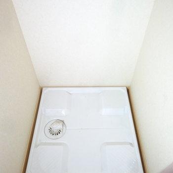 洗濯パンも脱衣所にありますよ。(※写真は2階の同間取り別部屋のものです)