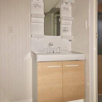 最後はサニタリー。細身の独立洗面台(※写真は2階の同間取り別部屋、フラッシュ撮影のものです)