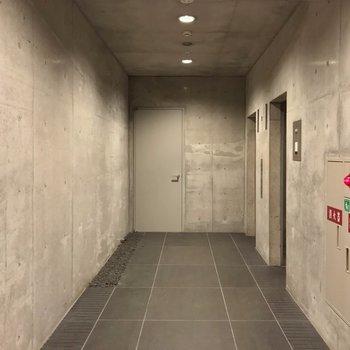 カクっと曲がってエレベータホール。ここもコンクリート打ちっ放しです。