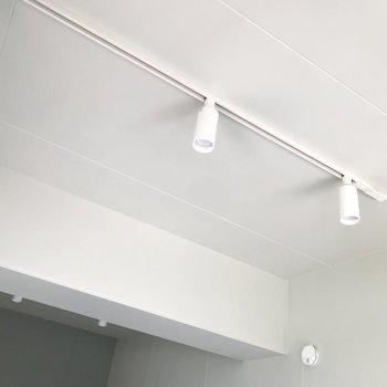 天井のライティングレールからは植物を吊るしたり◯(※写真は5階の同間取り別部屋のものです)