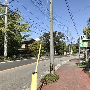 お部屋前は緩やかな坂道。このまま進むと桜坂駅です!