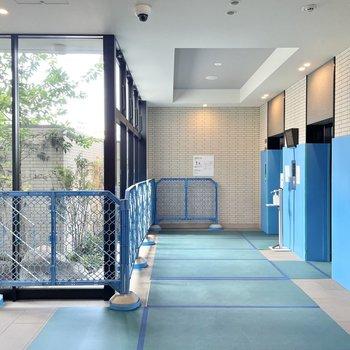 お部屋まではエレベーターでどうぞ。