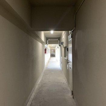 共用部の廊下になります。