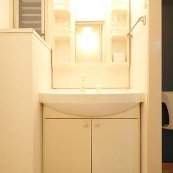 独立洗面台で身支度も◎(※写真は3階の同間取り別部屋のものです)