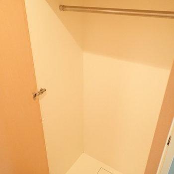 クローゼットと、(※写真は3階の同間取り別部屋のものです)