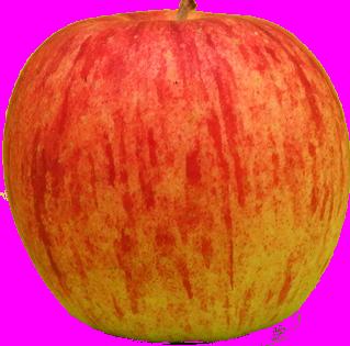 背景除去りんご