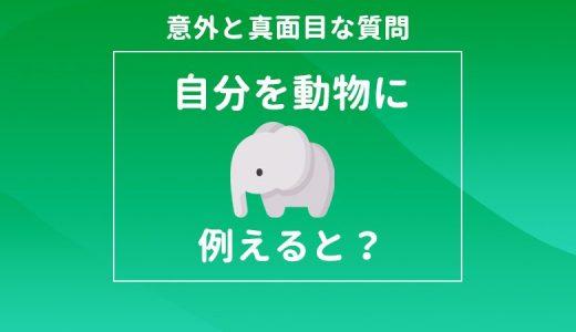 自分を動物に例えると|面接での答え方は何でもいい?例文と合わせて解説
