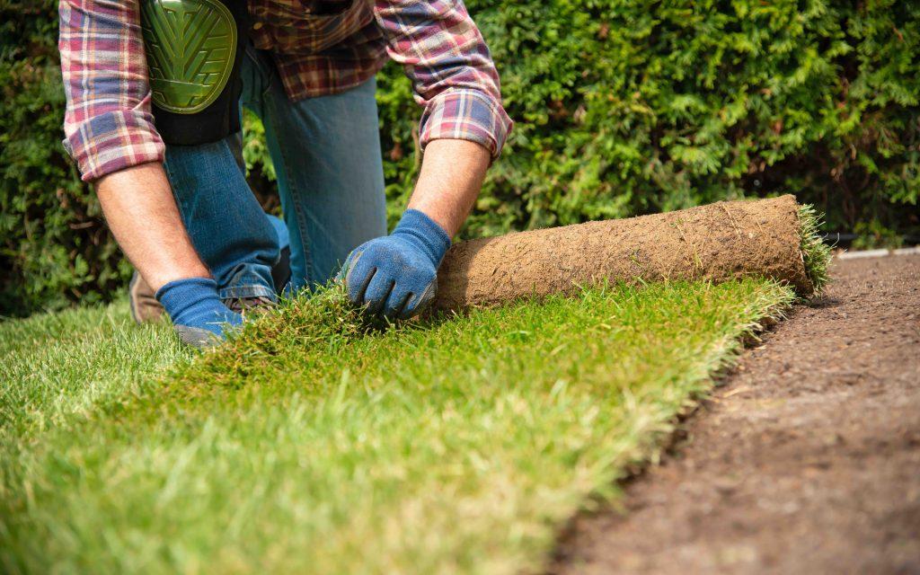 庭師 仕事 Zehitomo 庭のリフォーム