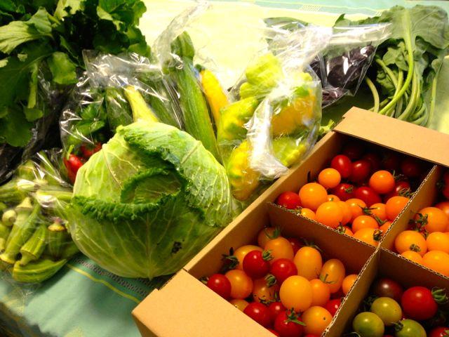 北海道から取り寄せ!シゼトモの自然農野菜で作る100%天然素材家庭料理のおもてなし