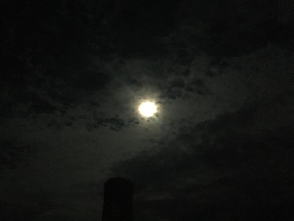 明日は十三夜「のちの月」です
