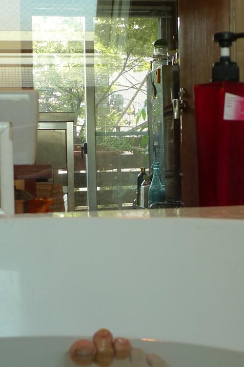 入選:ツリーハウス気分、3階浴室から眺める甲州街道欅並木