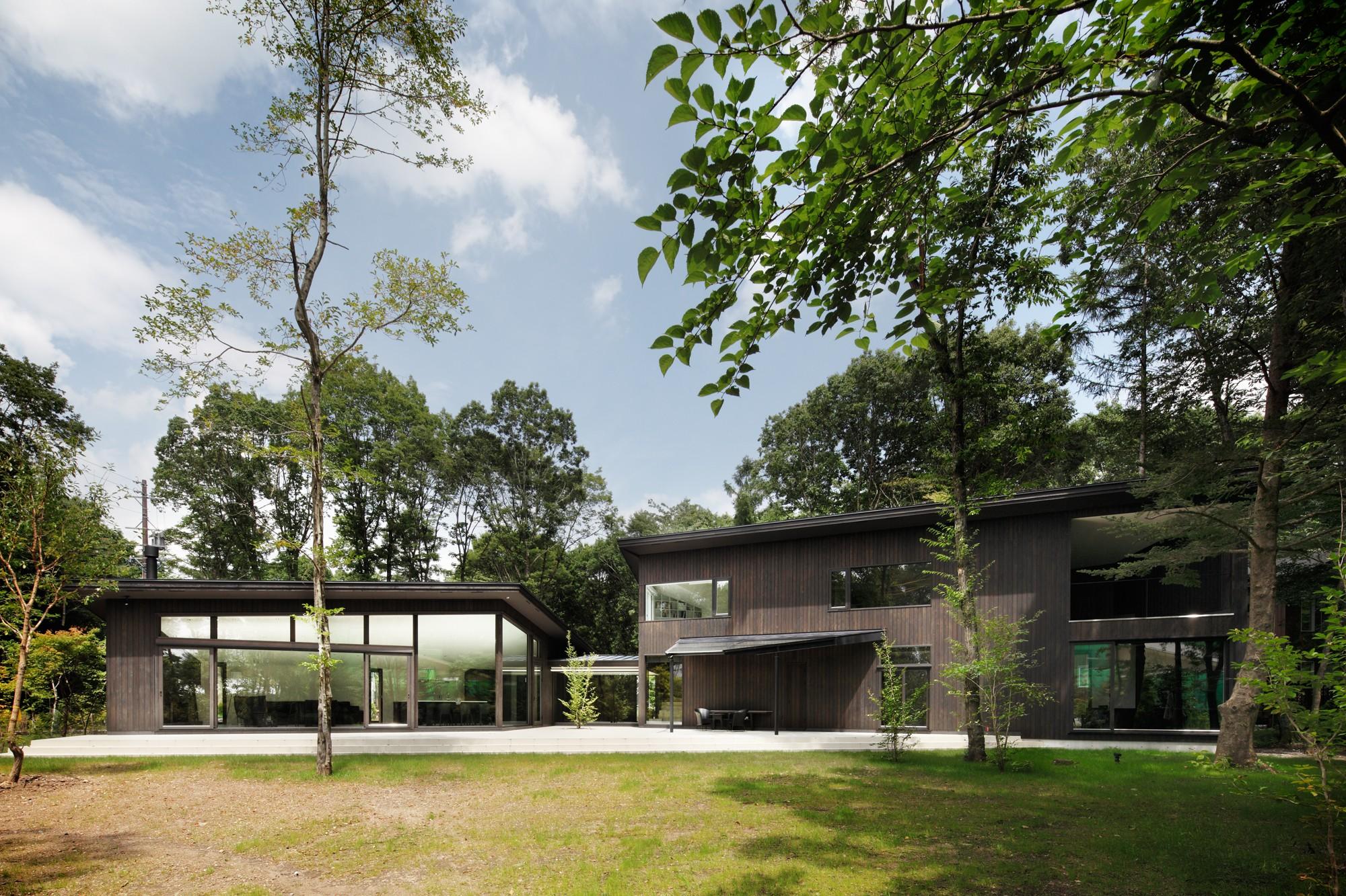 森の中に水平に広がる建物のライン , 写真 , 専門家プロファイル