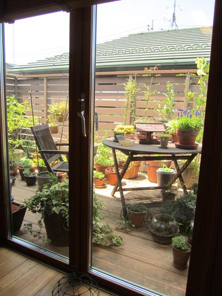 設計上 やむなくできた我が家の緑いっぱいの北側バルコニー