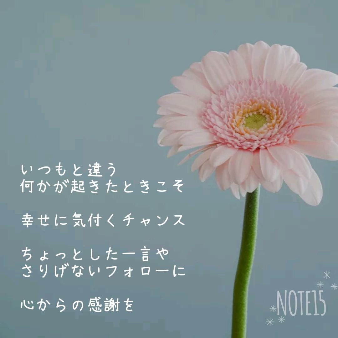 Photo Poem 感謝