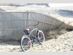 湘南の海辺には自転車が似合いますよ!