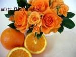 オレンジでリフレッシュ