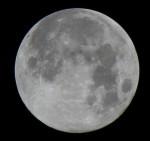 中秋の名月(満月)